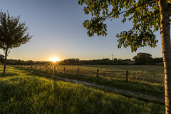 20160824_Obersee-35 (www.arternative-design.com) Tags: bielefeld d810 landschaftsfotografie liebefeld nikkor nikon nikond810 owl obersee ostwestfalen ostwestfalenlippe sonnenuntergang tamron tamron1530 vieadukt weitwinkel landscape landscapeporn sundown sunset
