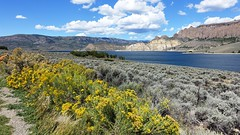 Blue Mesa Reservoir in the Curecanti National Recreation Area in Western Colorado (lhboudreau) Tags: bluemesareservoir reservoir water lake gunnison bluemesa rock rocks stone stones rockformation rockformations mountain mountains colorado usa westerncolorado cliff cliffs outdoor outdoors landscape landscapes curecantinationalrecreationarea curecanti plants plant flower flowers yellowflowers yellowflower cloud clouds sky