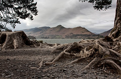 Cat Bells from Friar's Crag (SydPix) Tags: trees lake mountains water rocks stones lakedistrict roots hills cumbria fells derwentwater keswick catbells friarscrag sydyoung