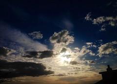 IMG_4898 (torbayphotography) Tags: dragondaggerphoto