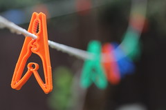 clothless clothesline (Carla Hoffman Smith) Tags: orange spider colours web blurred raindrops lonely clothesline peg clothless