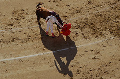 Abelln (Cazador de imgenes) Tags: madrid shadow espaa primavera miguel spring spain nikon ombra 15 sombra bull bulls ombre fotos toros mayo bullfight espagne schatten corrida toro spanien spagna bullfighting spanje spania ventas matador torero sanisidro  2015 lasventas spange abellan diestro abelln d7000