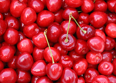 Cherry Oh Baby (Helen Orozco) Tags: red juicy cherries shiny sweet delicious crop organic homegrown
