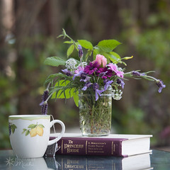 Ani s TEA (113) (Ani S Tea) Tags: tea afternoon beverage book cottage country daisy drink flora floral flower flowers garden hot lavender mug pink purple read reading relaxing rose rustic stilllife yellow