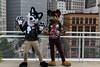 Sparx Traxx & AJ Shep at Anthrocon2016 (Skyfox1) Tags: usa pittsburgh pa convention furries ac fursuit anthrocon furryfandom fursuits anthropomorphics fursuiters fursuiter fursuiting ajshepajshepmalakai sparxtraxxsparxtraxx