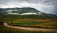 Monte Vettore, Sibillini (R.o.b.e.r.t.o.) Tags: castellucciodinorcia nuvole umbria sentiero monti prato fiori papaveri erba rosso verde cielo prati pianafiorita altopiano