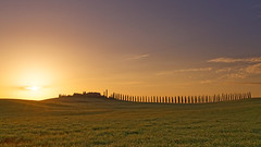 DSC03368 (a.saadhoff) Tags: toskana toscana valdorcia zypressen cipresso landscape landschaft sonnenaufgang sunrise