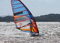 Aug0305a (Mike Millard) Tags: hamworthypark pooleharbour windsurfers