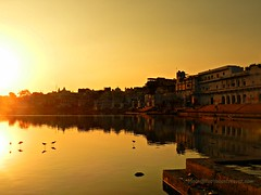dusk at the holy lake of #Pushkar (moon@footlooseforever.com) Tags: pushkar lake rajasthan birds silhouette water temples