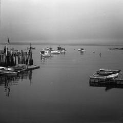 harbor, wharf, boats, near dusk, McCloon's, Spruce Head, Maine, Zeiss Inkonta M, Rollei RXP 400, Ilford Ilfosol 3 Developer, mid September 2016 (steve aimone) Tags: harbor docks wharf boats lobsterboats skiffs dusk neardusk fog sprucehead maine mcloons midcoast mediumformat 120 film 120film zeissikontam rolleirxp400 ilfordilfosol3developer blackandwhite seascape