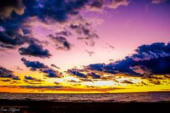Setting sun (trinaclifford) Tags: sunsets beach hamburgbeach buffalo buffalove buffalophotography 716 lakes lakeerie water travelbuf visitbuffaloniagara nature naturelover landscapes landscapecaptures landscapephotography naturephotography ngc nikond7000