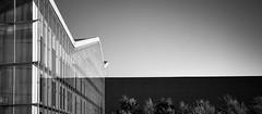 Visible (Ivan_Fle) Tags: sky blackandwhite espaa landscape spain europe flickr shot sony ivan line valladolid 1855 hdr lineas lightroom fle castillayleon photomatix espaaspain emount blinkagain sonynexf3
