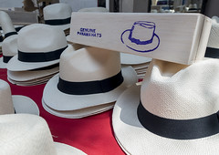 Panama, Province Of Panama, Panama City, Panama Hats For Sale In A Local Market In Casco Viejo (Eric Lafforgue) Tags: stilllife white color latinamerica hat horizontal retail closeup shopping outdoors photography day forsale market nobody nopeople souvenir choice panama oldtown vacations panamacity centralamerica marketstall cascoviejo panamahat cascoantiguo capitalcities traveldestinations olddistrict mediumgroupofobjects panama012 provinceofpanama