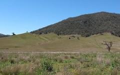 1305 Sandy Creek Road, McCullys Gap NSW