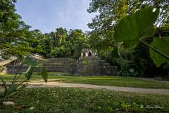 sunshine (stradasaid) Tags: light méxico nikon palenque turismo chiapas pirámides