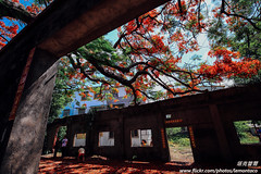 IMG_3919 (Tacolaire) Tags: 台灣 風景 生活 小品 攝影