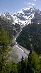Passo Stelvio from Trafoi (Nevica) Tags: blue sky italy snow tree pine italia scree altoadige passostelvio stelvio