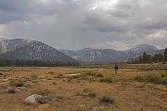 Horseshoe Meadow (Marc Arndt) Tags: landscape sierra flyfishing easternsierra