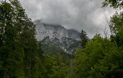 Planspitze (Frenkieb) Tags: austria osterreich campingplatz forstgarten nationalpark gesuse planspitze