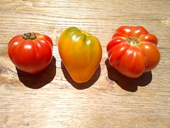 tomates (Martin PEREZ 68) Tags: red stilllife rouge rojo tomatoes tomates bodegn naturemorte f3pro