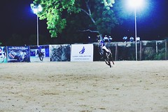 (Captured by Bachi) Tags: winter horses horse me night outdoor player arena winner polo gallop equestrain royalgame winshot