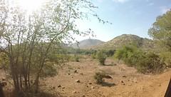 GOPR0061 (southafricaproject2016) Tags: pilansburg safari