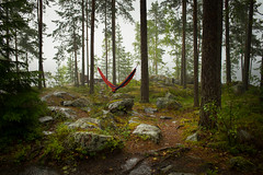 Rain Shower (@Tuomo) Tags: finland summer päijänne jämsä nikon df 35mm18