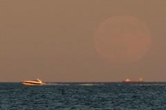 2016-07-19 Moonrise at Beach (74) (Paul-W) Tags: ocean blue sunset sky seagulls water clouds sand surf waves purple wells moonrise ogunquit 2016 northogunquitbeach