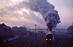 Loco Ol49 65  |  Wolsztyn  |  1991 (keithwilde152) Tags: station train landscape dawn town outdoor tracks poland steam 1991 passenger locomotives exhaust pkp wielkopolska wolsztyn ol49