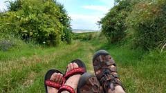 Frei nach Loriot: Einfach hier sitzen (Frank Hamm) Tags: wandern rheinhessen weinberge hahnheim selzen
