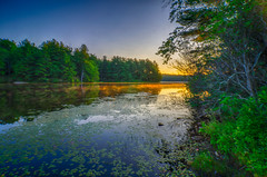 Sunshine-in-the-Mist (desouto) Tags: hdr nature water stones lakes ponds flowers sky clouds stream