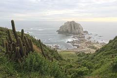 Islote Peablanca, El Canelo (Imthearsonist) Tags: islotepeablanca algarrobo elcanelo chile landscape nature sea rocks pacificocean paisaje mar canoncamera canonreflext3i
