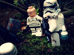 Encounter (svidri.halfdan) Tags: lego starwars endor