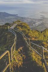 Stairs (anthonyvillar) Tags: hawaii oahu hawaiian style haiku stairs stair way heaven paradise 808