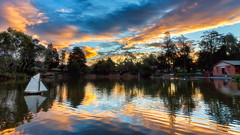 Messing about with Boats (djryan78) Tags: autumn victoria sunset surreypark water boxhill outdoor lake fall remotecontrol clouds 1740l 6d surreyparklake 1740 dslr melbourne canon6d cloud canon australia surreyhills park sky reflection man boat