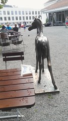 Bookcrossing release (zimort) Tags: bok book bookcrossing wildrelease gjvik gjvikgrd park kunst art skulptur sculpture hest