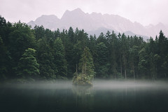 Lonely tree (Bokehm0n) Tags: landscape nature vsco explore flickr earth travel folk 500px fog water tree mist no person lake vscofilm bavaria germany alps wood mountain dawn outdoors daylight reflection scenic