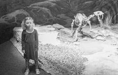 Sabertooth Tiger and Elise (juan_guthrie) Tags: drumheller alberta royaltyrrellmuseum dynosaur