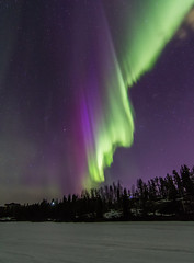 Grace Lake (nwtarcticrose) Tags: winter sky nature weather night lights northwest aurora northern territories borealis yellowknife landsca オーロラ 북극광 족 나이프 옐로 イェローナイフ