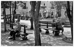 PLaza De Armas (Samy Collazo) Tags: blackandwhite blancoynegro nikon oldsanjuan puertorico streetphotography sanjuan nikonf3 viejosanjuan plazadearmas arista aristaedu400 fotografiacallejera nikkoraf50mmf18