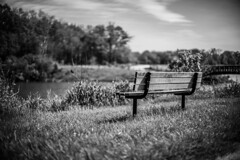 Serenity (Fret Spider) Tags: park leica bridge trees shadow sky bw usa blur nature water monochrome grass clouds bench outside outdoors illinois spring pond woods dof bokeh path empty wildlife sony hologram outoffocus il depthoffield trail walkabout swirl manual hay blacknwhite vignetting libertyville vignette manualfocus wander holographic oof wideopen a7ii independencegrove manuallens mirrorless bokehdelicious manualaperture