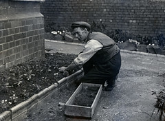 THE GARDENER BEDDING OUT. (JOHN MORGAN .) Tags: old bw white black vintage found photo interesting different foto photographer photos unitedkingdom unknown and british unusual