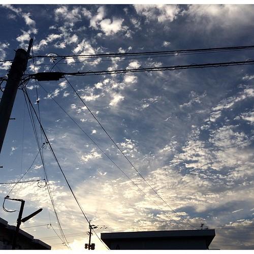 おはようさん♪♪  今日は良い天気になりそうな、長崎・大村  体調あまり良くは無いけど、頑張っていこう!!
