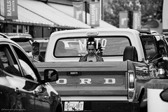 traffic jam (bluechameleon) Tags: street summer people blackandwhite bw woman reflection cars ford traffic streetphotography pickuptruck smartphone granvilleisland bluechameleon sharonwish bluechameleonphotography