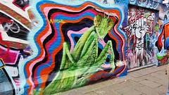 Venom & Jimmy Steen / Werregarenstraatje - 23 jul 2016 (Ferdinand 'Ferre' Feys) Tags: gent ghent gand belgium belgique belgi streetart artdelarue graffitiart graffiti graff urbanart urbanarte arteurbano venom martin jimmysteen