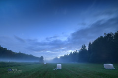 Lnna - Juli 2016 (Hamza Kkgl) Tags: hkfoto hamza hkcine hamzakucukgl hkfotonet wwwhkfotonet himmel kckgl kucukgl kkgl landskap leefilter light lnna nikon nikkor natur nikkor1635mmf4 1635mm 1635mmf4vr nikond5 d5 stockholm sverige sweden sommar skog