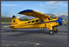 N904AK State of Alaska Department of Natural Resources (Bob Garrard) Tags: alaska natural state palmer beaver department resources dehavilland dhc2 paq l20a n904ak paaq