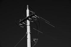 Cables at Cotter (Rantz) Tags: australia australiancapitalterritory blue bluetiful cableicious cablelicious cables canberra cotterdam derek monochrome myoz rantz