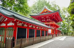 Igusa -hachimangu,Tokyo Suginami (sapphire_rouge) Tags: temple japanese suginami   japan  tokyo