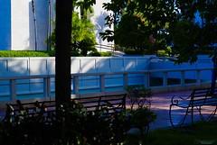 Parque Independencia (Carlos Durn Photography/CAD) Tags: parqueindependencia parque park green plantas hd haltadefinicion carlosduran santodomingo zonacolonial patria city ciudad republicadominicana
